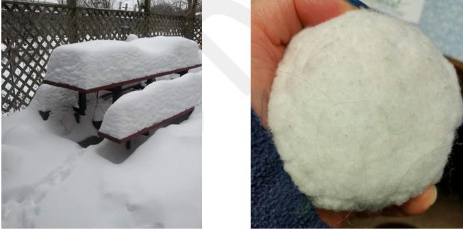 snow-235