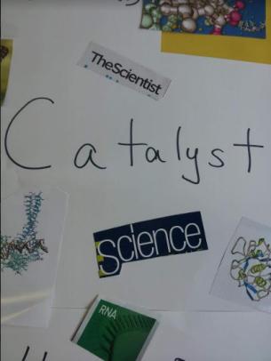597 catalyst 1